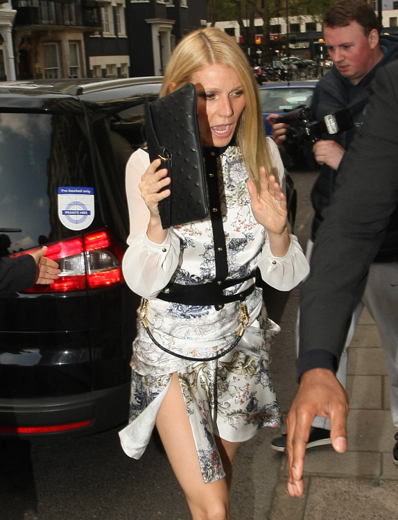The Many Bags of Gwyneth Paltrow (20)