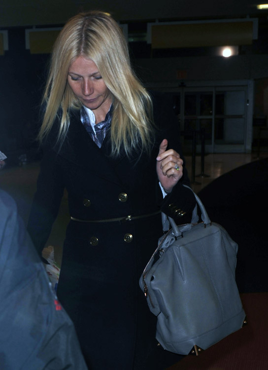 The Many Bags of Gwyneth Paltrow (4)