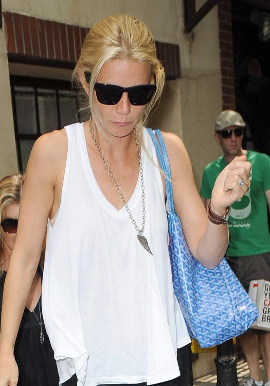 The Many Bags of Gwyneth Paltrow (5)