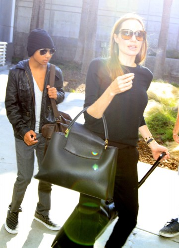 Angelina Jolie carries a Louis Vuitton Capucines Bag in LA (1)