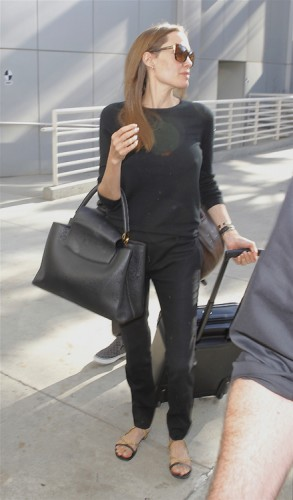 Angelina Jolie carries a Louis Vuitton Capucines Bag in LA (2)