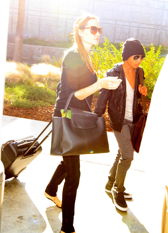 Angelina Jolie carries a Louis Vuitton Capucines Bag in LA (3)