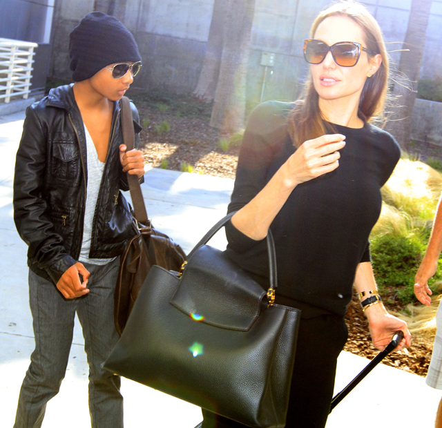 Angelina Jolie carries a Louis Vuitton Capucines Bag in LA (5)