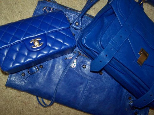 Blue Bags Family Photo