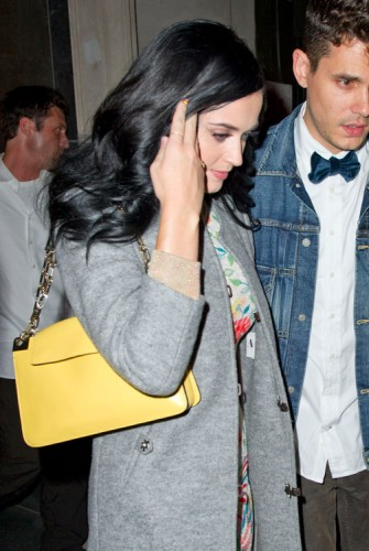 The Many Bags of Katy Perry (18)