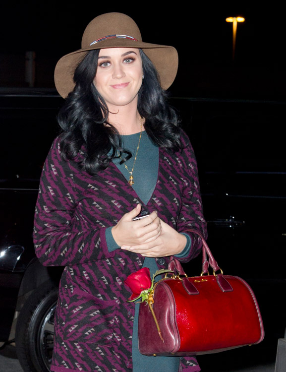 The Many Bags of Katy Perry (22)