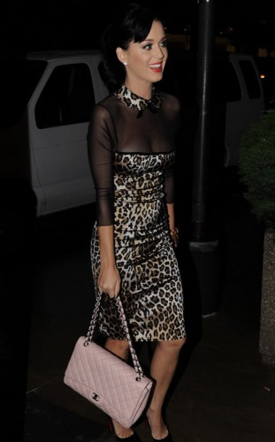 The Many Bags of Katy Perry (6)