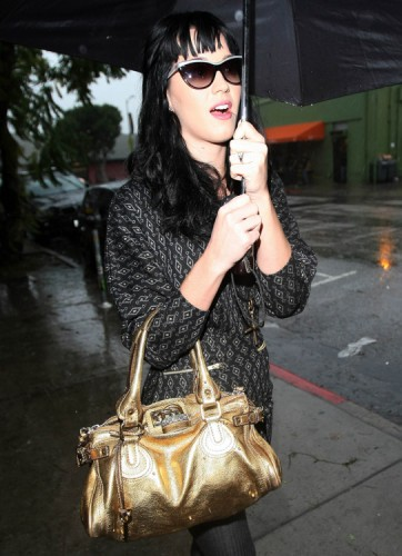 The Many Bags of Katy Perry (7)