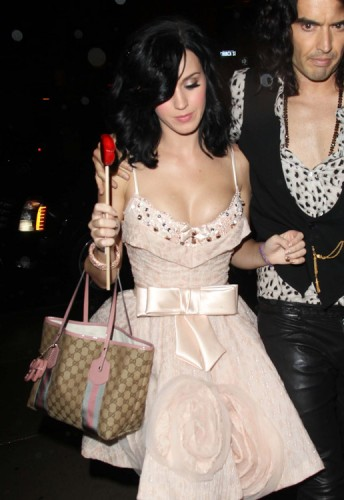 The Many Bags of Katy Perry (8)