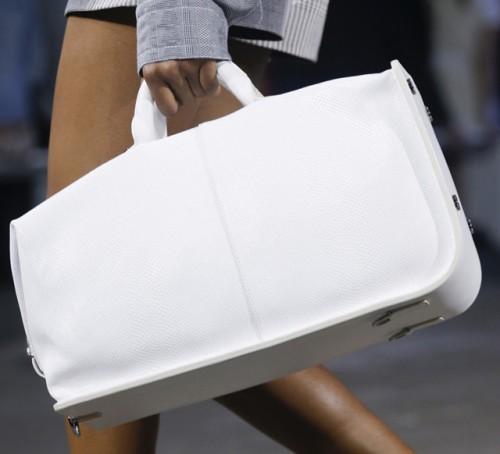 Alexander Wang Spring 2014 Handbags (4)