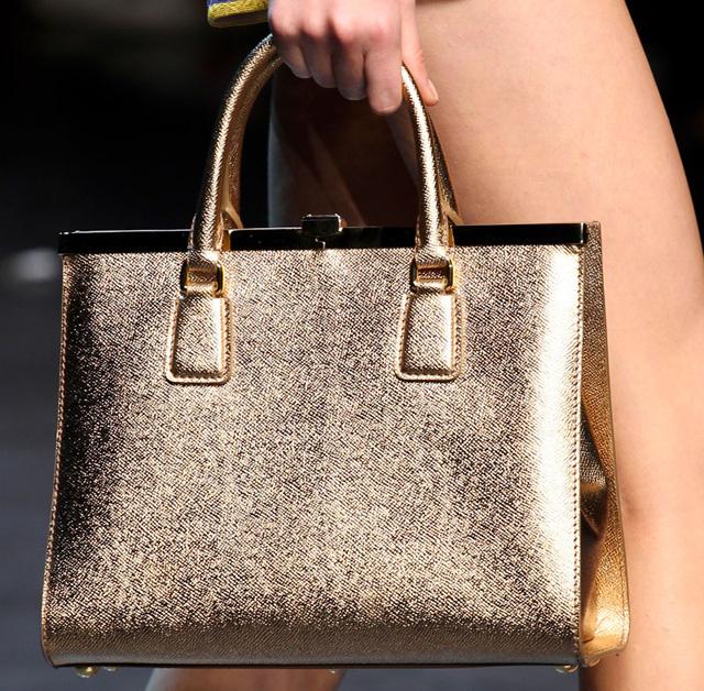 Dolce & Gabbana Spring 2014 Handbags (25)