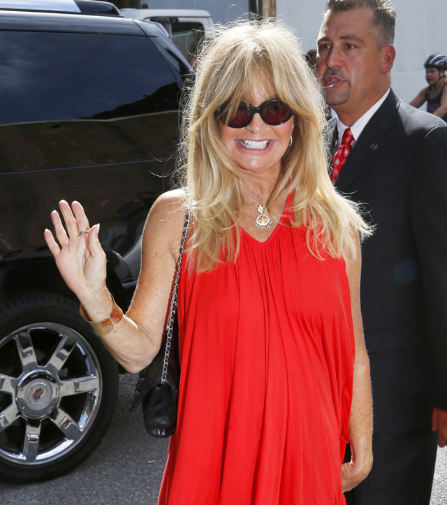 Celebrity arrivals at Donna Karan's New York Spring 2014 Fashion Week Show in NYC
