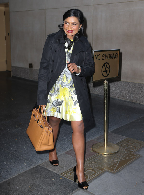 Mindy Kaling carries a tan Hermes Birkin in NYC (3)