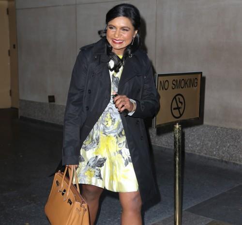 Mindy Kaling carries a tan Hermes Birkin in NYC (5)