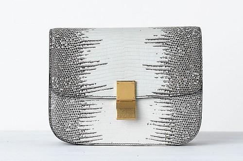 Celine Handbags Spring 2014 (23)