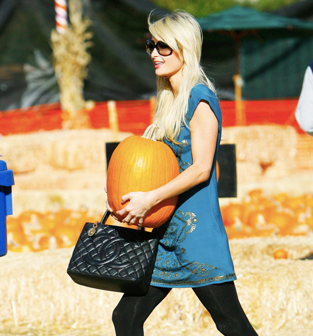 The Many Bags of Mr. Bones Pumpkin Patch-2