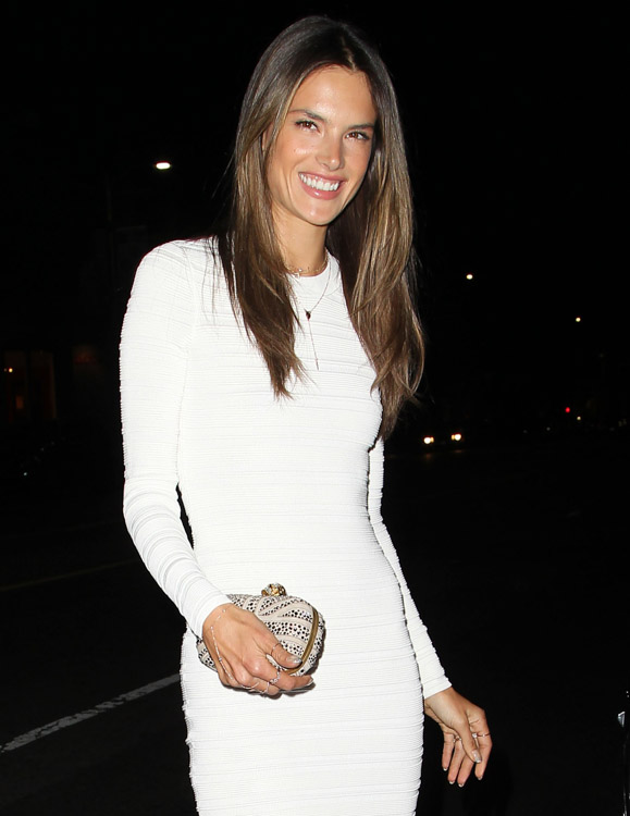 The Many Bags of Alessandra Ambrosio (3)