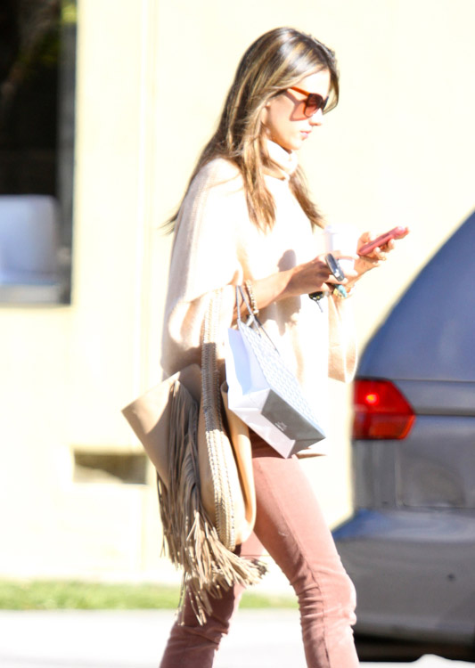 The Many Bags of Alessandra Ambrosio-17