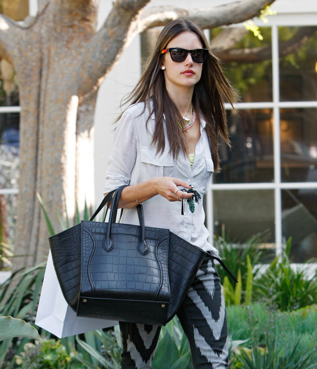 The Many Bags of Alessandra Ambrosio-20