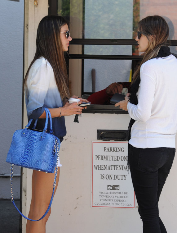 The Many Bags of Alessandra Ambrosio-21
