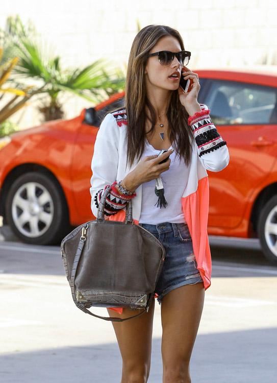 The Many Bags of Alessandra Ambrosio-28