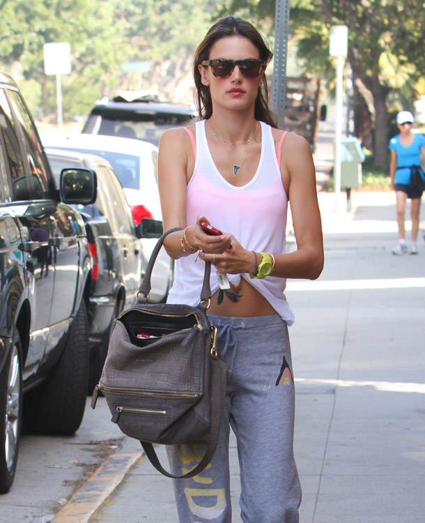 The Many Bags of Alessandra Ambrosio-29