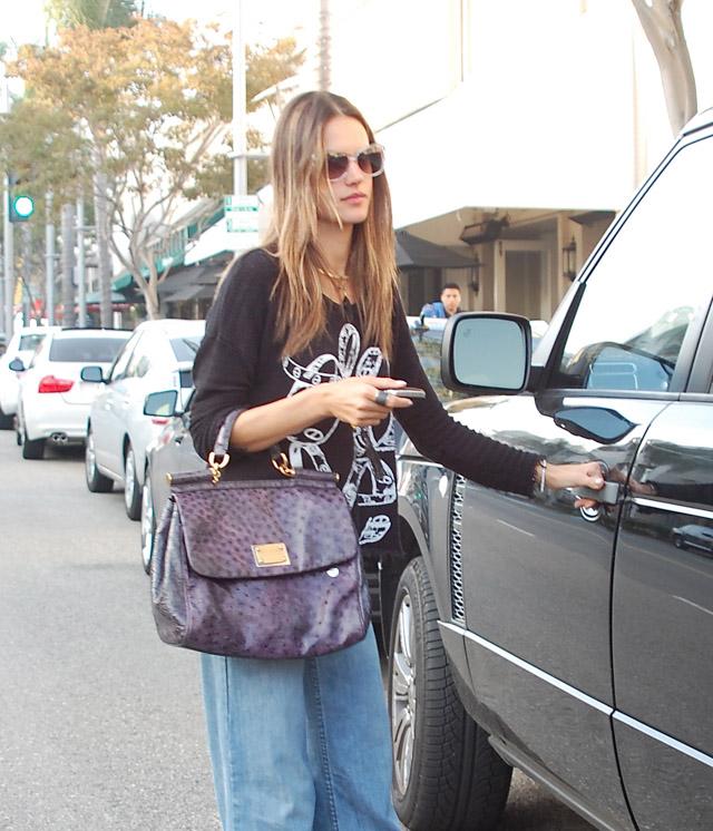 The Many Bags of Alessandra Ambrosio-6