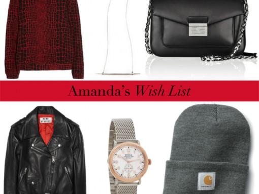 Amanda's 2013 Christmas (and Birthday) Wish List