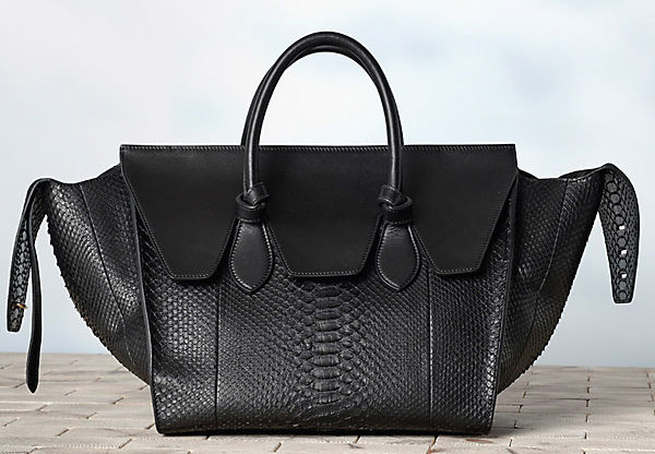 Celine-Winter-2013-Handbags-29