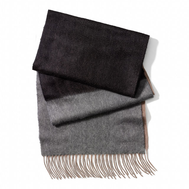 Coach Cashmere Colorblock Striped Scarf