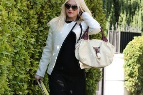 Is That a Fendi Spy Bag on Gwen Stefani's Arm?
