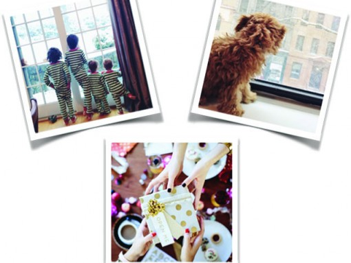 Check Out Our Favorite Holiday Instagrams of the Week