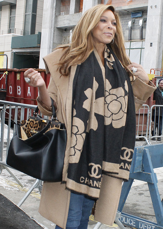 1d6c6837cd4a 50+ Bags and the Celebrities Who Carried Them at New York Fashion ...