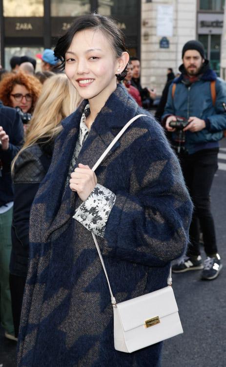 Celebrity Handbags at Paris Fashion Week Fall 2014-34