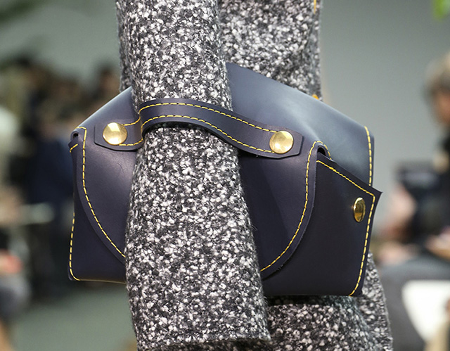 Celine Fall 2014 Handbags 5