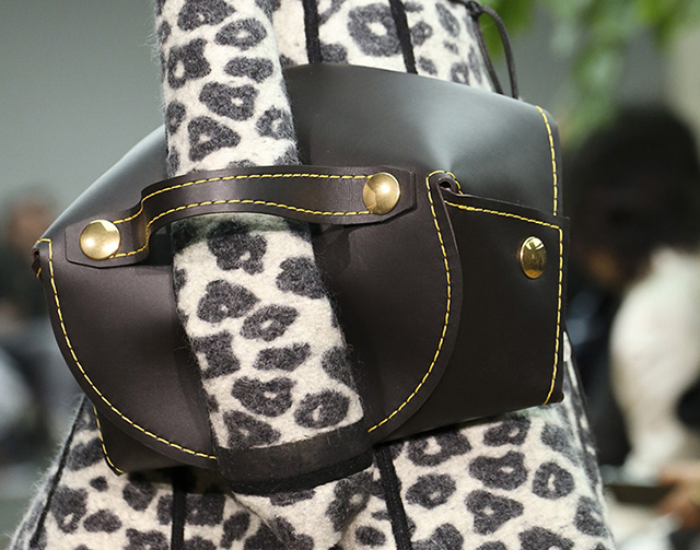 Celine Fall 2014 Handbags 8