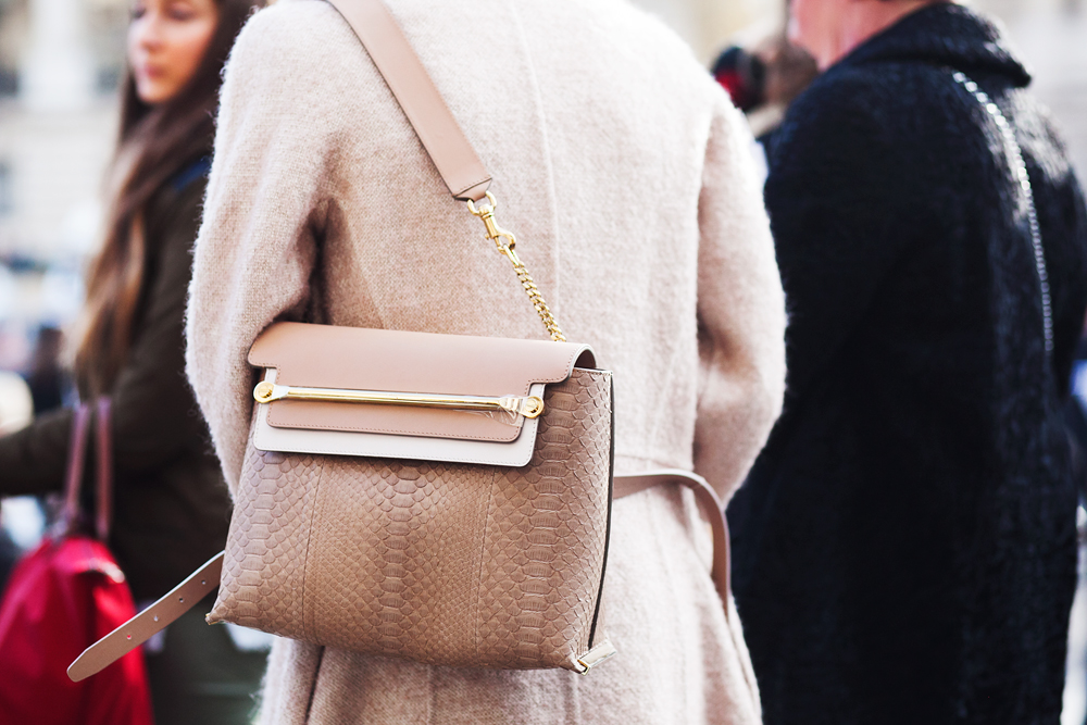 Paris Fashion Week Bags 9
