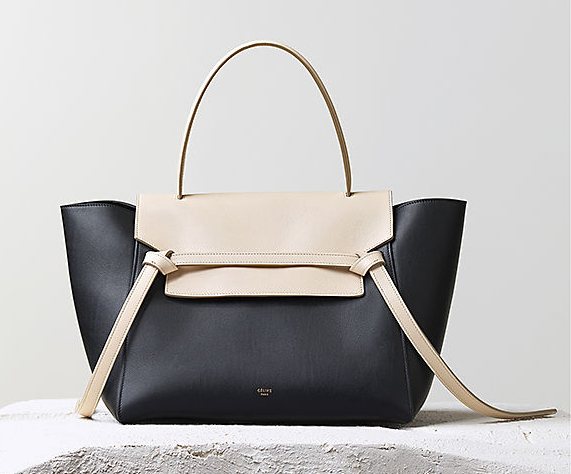 Celine Fall 2014 Handbags 14