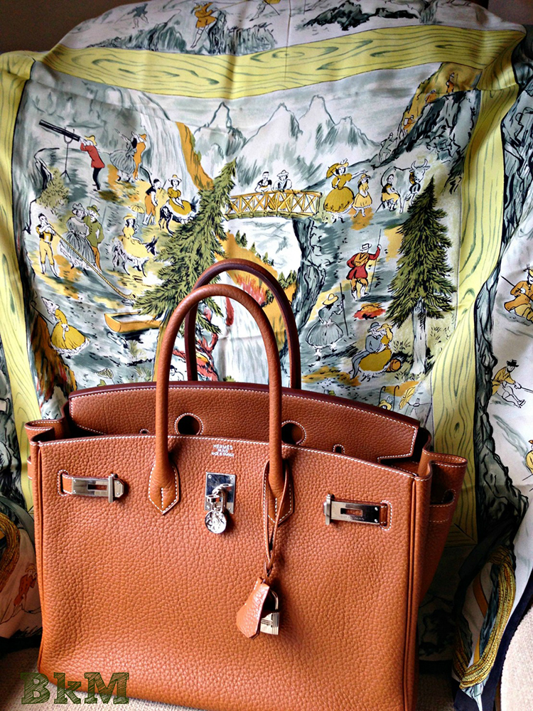 Hermes Birkin and Scarf