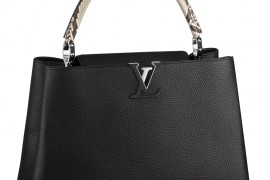The Stunning Louis Vuitton Capucines