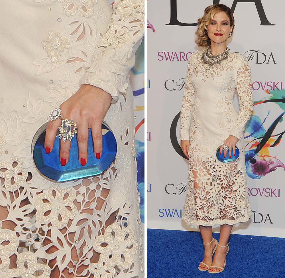 Sophia Bush Rauwolf Oval Gemstone Clutch