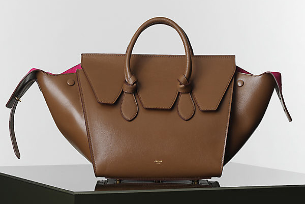 Celine Winter 2014 Handbags 12