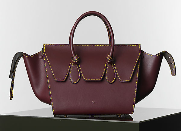 Celine Winter 2014 Handbags 13