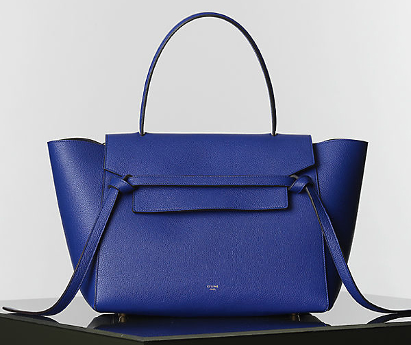 Celine Winter 2014 Handbags 15