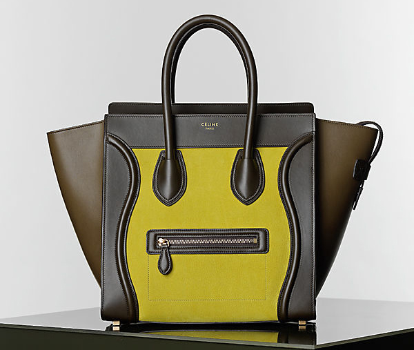Celine Winter 2014 Handbags 17