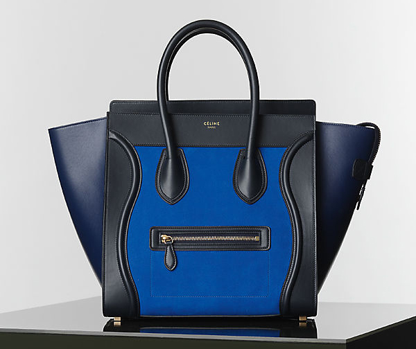 Celine Winter 2014 Handbags 18