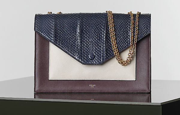 Celine Winter 2014 Handbags 30
