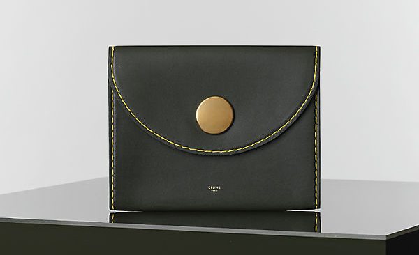 Celine Winter 2014 Handbags 4