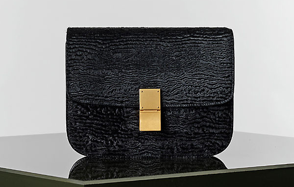 Celine Winter 2014 Handbags 9