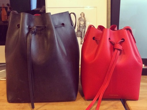 Mansur Gavriel Large and Mini Bucket Bag Size Comparison